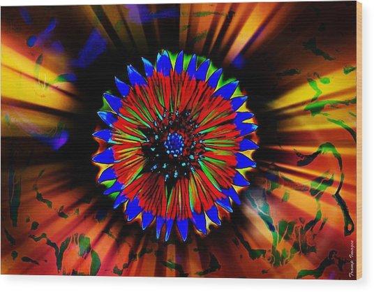 Radiate  Wood Print