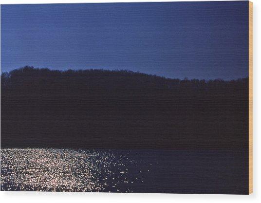 Radnor Lake Gets Dark Wood Print by Randy Muir