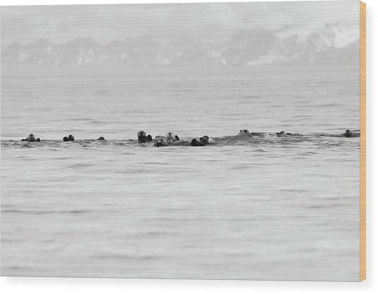 Raft Of Otters Wood Print