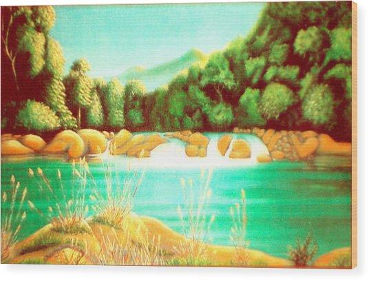 Rai Valley Falls Si Nz Wood Print by Barbara Stirrup