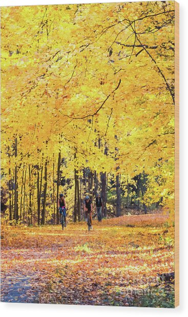Autumn Glory On The Rail Trail Wood Print