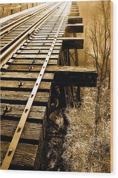 Rails Of Olde  Wood Print by Adrienne Talbot