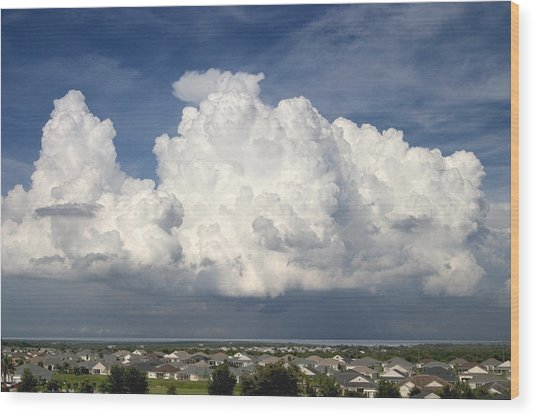 Rain Clouds Over Lake Apopka Wood Print by Carl Purcell