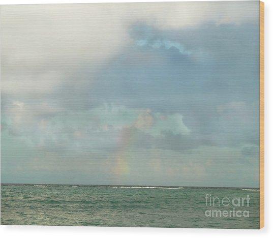 Rainbow 1 Wood Print