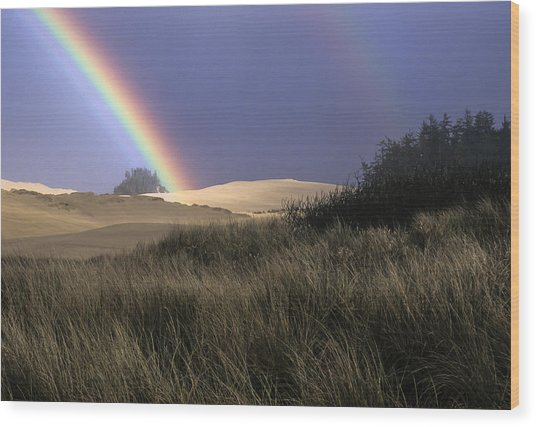 Rainbow And Dunes Wood Print