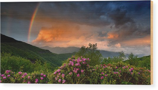 Rainbow And Rhododendrons On The Parkway Wood Print