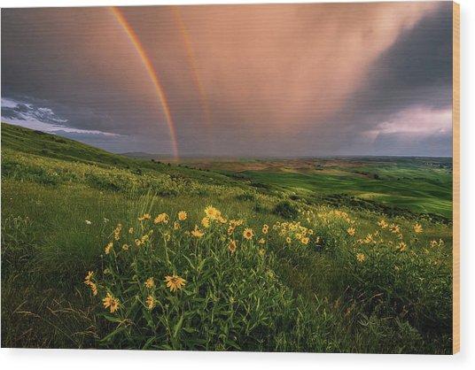 Rainbow At Steptoe Butte Wood Print