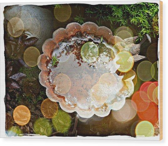 Rainbow Birdbath Wood Print