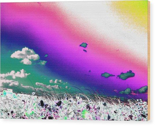 Rainbow Borealis Wood Print