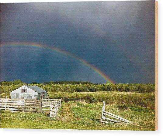 Rainbow Wood Print by Brian Sereda