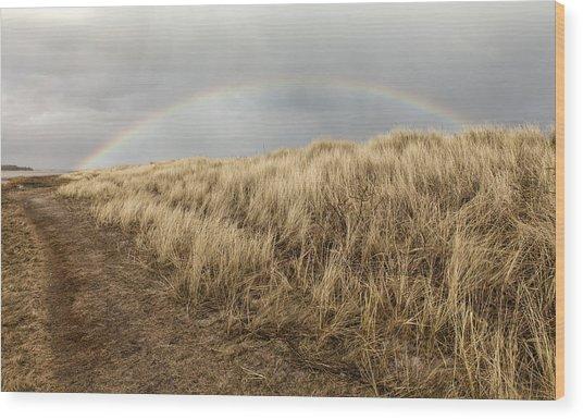 Rainbow By The Seaside Wood Print