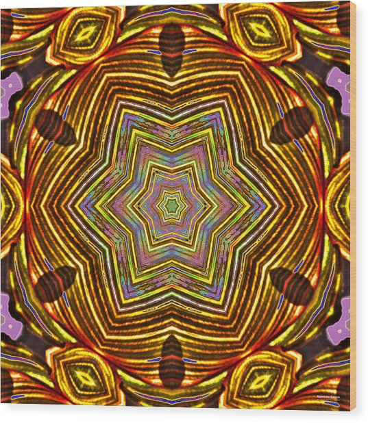 Rainbow Canna Wood Print