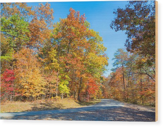 Rainbow Colored Drive Wood Print