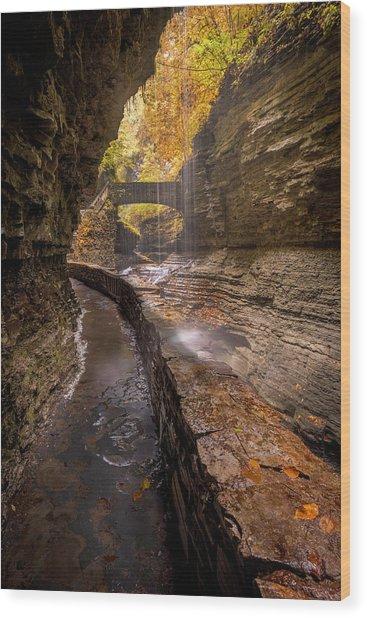 Rainbow Falls 2 Wood Print by Michael Donahue