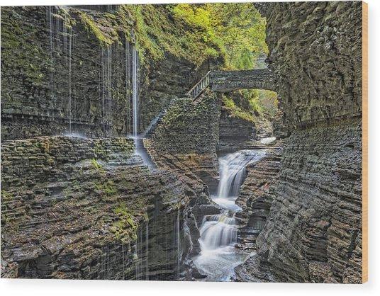 Rainbow Falls At Watkins Glen State Park Wood Print