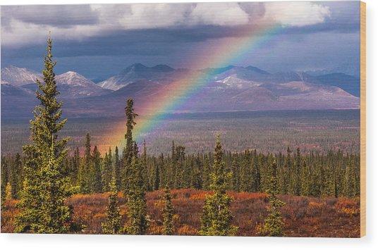Rainbow Wood Print by Joanie Havenner