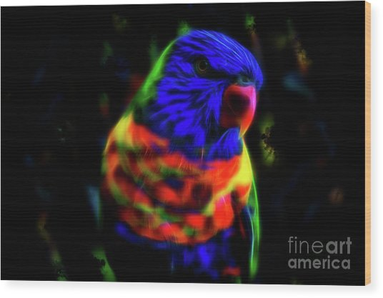 Rainbow Lorikeet - Fractal Wood Print