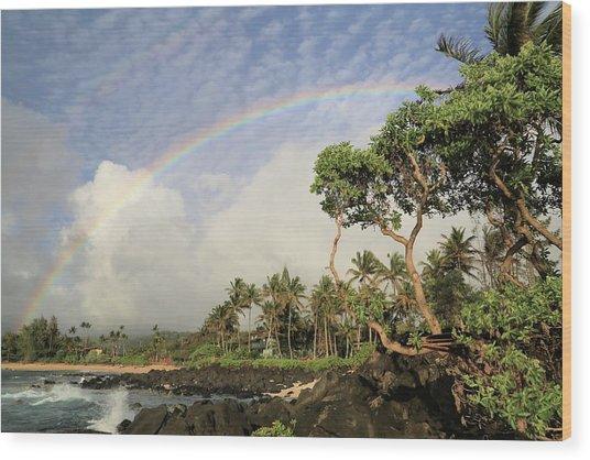 Rainbow Over The Beach Wood Print