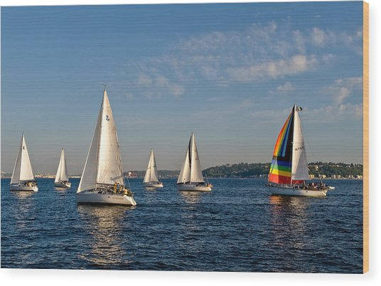 Rainbow Sails Wood Print by Tom Dowd