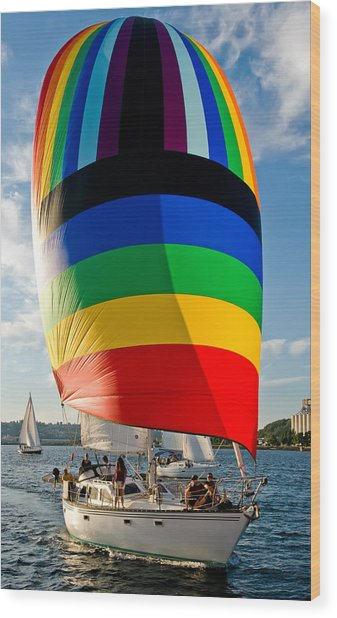 Rainbow Spinaker Wood Print by Tom Dowd