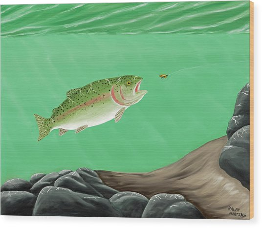 Rainbow Trout - Enticed From The Pool Wood Print