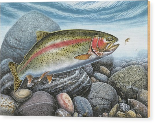 Rainbow Trout Stream Wood Print