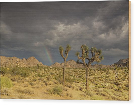 Rainbows Thunderstorms And Sunsets Wood Print