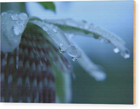 Rainflower Wood Print by Linda Russell
