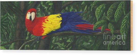 Rainforest Parrot Wood Print