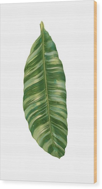 Rainforest Resort - Tropical Banana Leaf  Wood Print