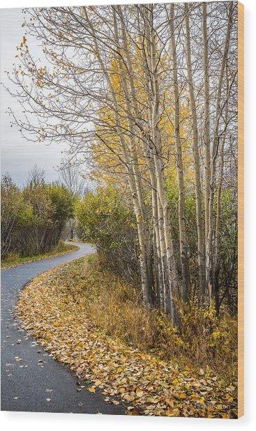 Rainy Autumn Walk Wood Print