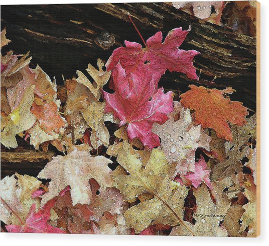 Rainy Day Leaves Wood Print