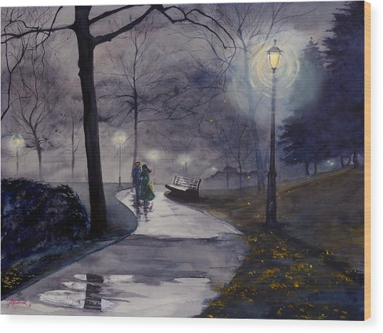 Rainy Night In Central Park Wood Print