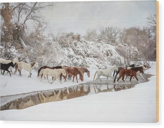 Ranch Horse Winter Wood Print
