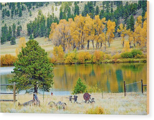 Ranch Pond In Autumn Wood Print