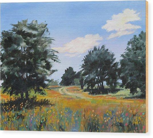 Ranch Road Near Bandera Texas Wood Print