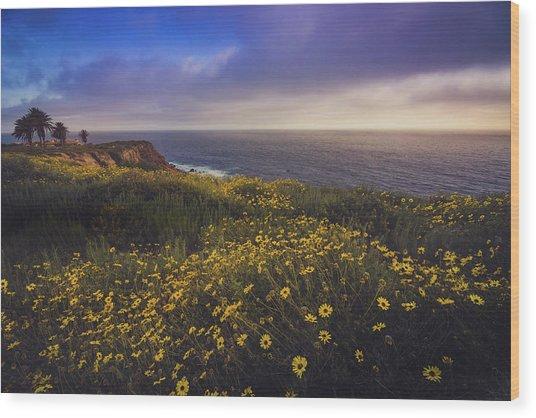 Rancho Palos Verdes Super Bloom Wood Print