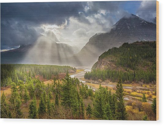 Range Of Light // Many Glacier Valley, Glacier National Park  Wood Print