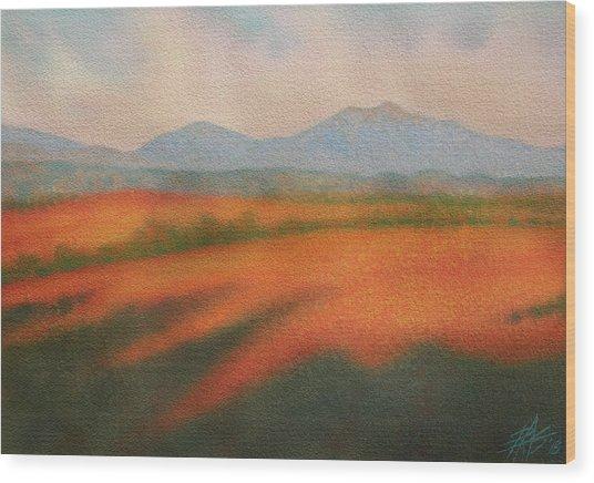 Rangeland Wood Print by Robin Street-Morris