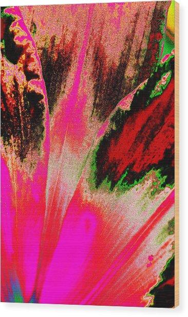 Rare Daylily Wood Print