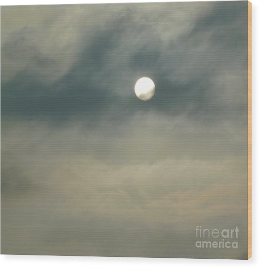 Rare Moment Wood Print by Donna McLarty