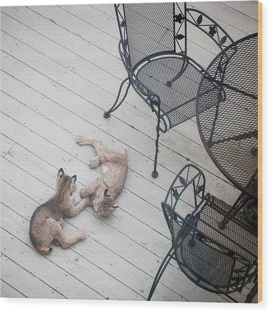 Wrestling Lynx Wood Print