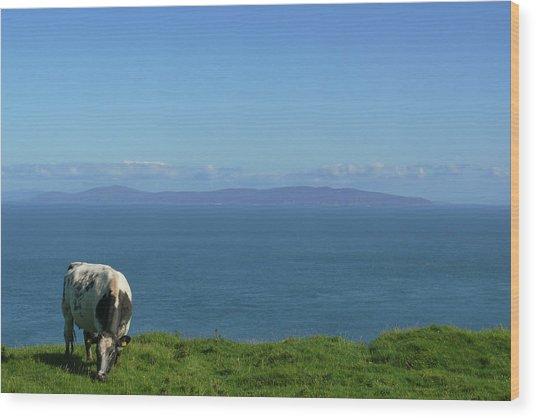 Rathlin Island Wood Print