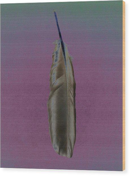 Raven Feather Wood Print