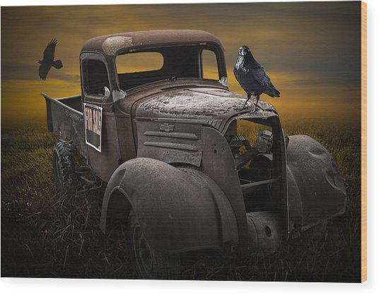 Raven Hood Ornament On Old Vintage Chevy Pickup Truck Wood Print