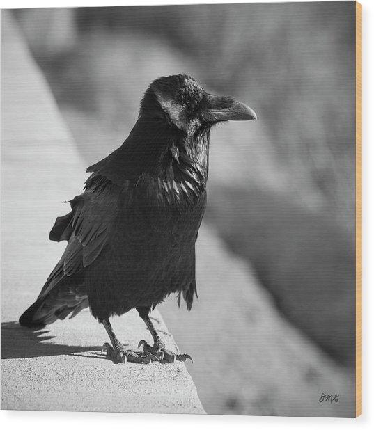 Raven Iv Bw Wood Print
