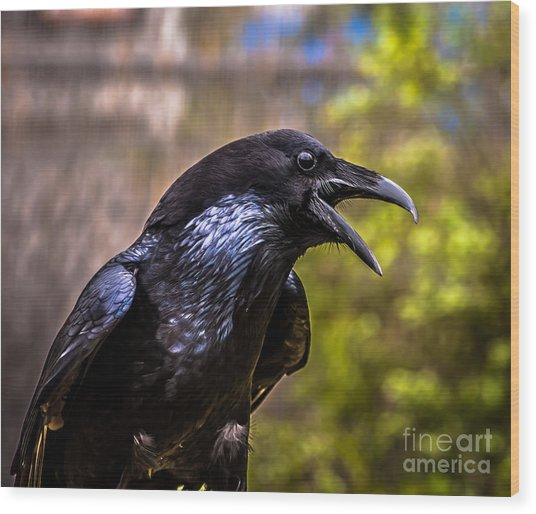 Raven Profile Wood Print