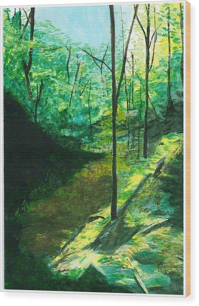 Raven Rocks 3 Wood Print