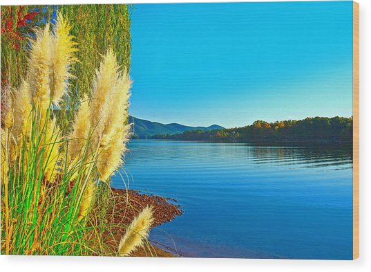 Ravenna Grass Smith Mountain Lake Wood Print