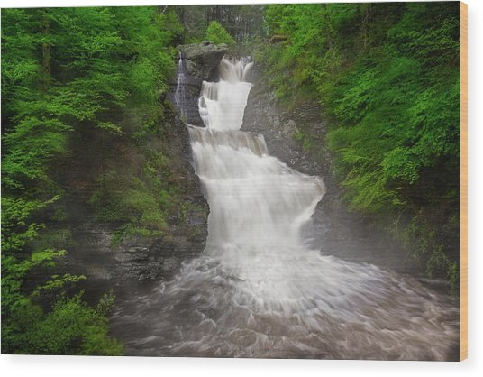 Wood Print featuring the photograph Raymondskill Falls by Susan Candelario